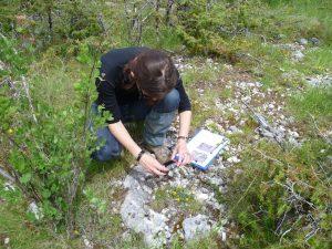 Biologiste du PNR évaluant une parcelle potentielle